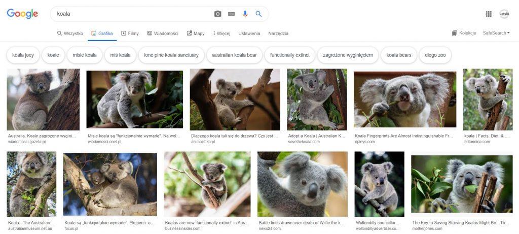 Wyniki wyszukiwania Google Grafika. CzyOptymalizacja grafiki ma sens